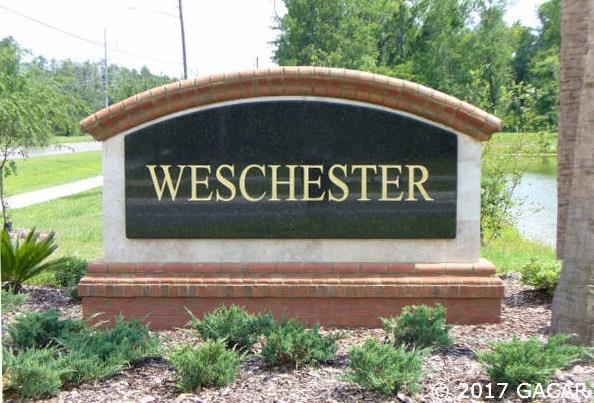 8247 NW 53 Street, Gainesville, FL 32653 (MLS #406388) :: Bosshardt Realty
