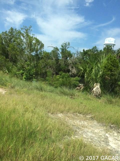 Hwy 490 Ozello Trail, Crystal River, FL 34429 (MLS #408729) :: Bosshardt Realty