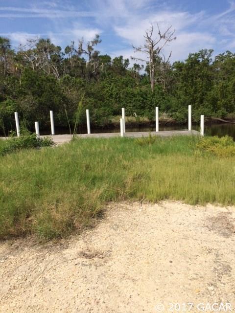 2186 S Appletree Pt., Crystal River, FL 34429 (MLS #408730) :: Bosshardt Realty