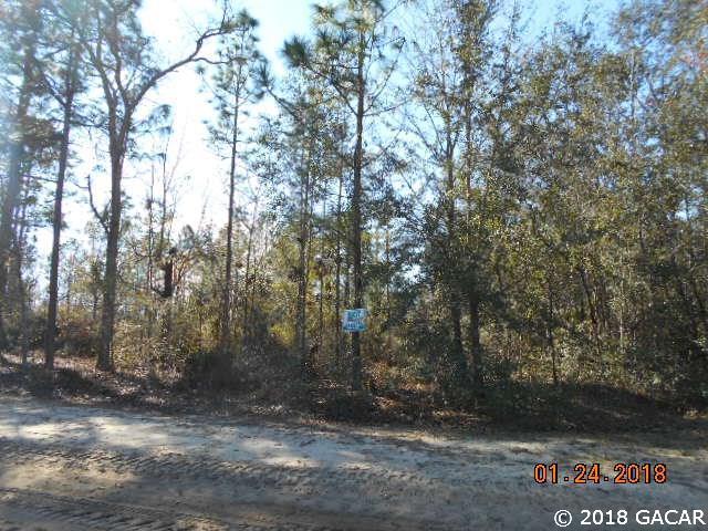 00 Martin Drive, Hawthorne, FL 32640 (MLS #410499) :: Florida Homes Realty & Mortgage