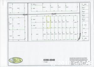 0000 Pine Place, Interlachen, FL 32148 (MLS #410962) :: Florida Homes Realty & Mortgage