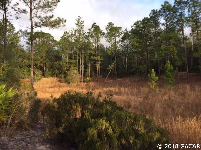 242 Sleepy Hollow Drive, Interlachen, FL 32148 (MLS #411350) :: Florida Homes Realty & Mortgage