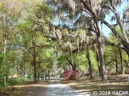 102 Sally Street, Hawthorne, FL 32640 (MLS #411655) :: Thomas Group Realty