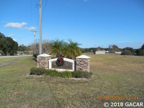 TBD Blue Marlin Dr., Keystone Heights, FL 32656 (MLS #412320) :: Rabell Realty Group