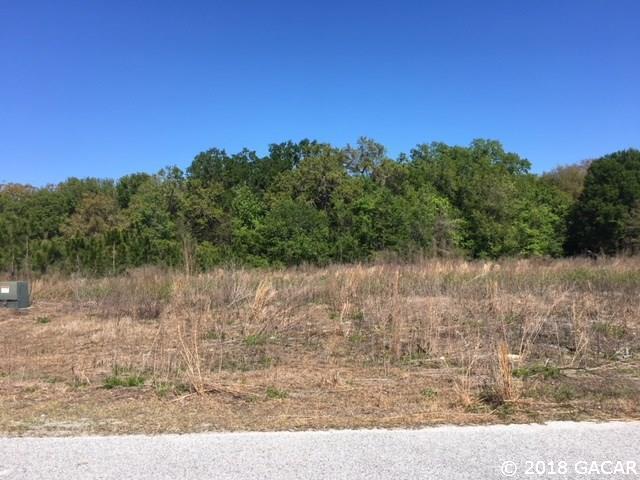 10649 SW 94TH Avenue, Gainesville, FL 32608 (MLS #413112) :: Bosshardt Realty