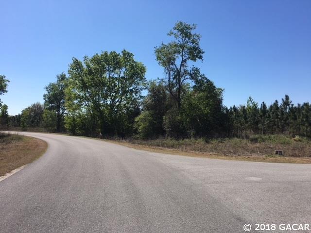 10353 SW 98TH Avenue, Gainesville, FL 32608 (MLS #413116) :: Bosshardt Realty