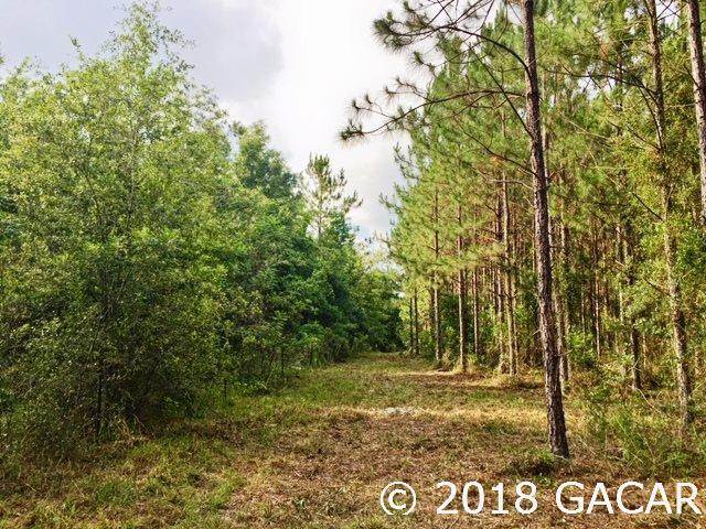 Lot 25 & 34 SW Carnation Court, Ft. White, FL 32038 (MLS #415942) :: Bosshardt Realty