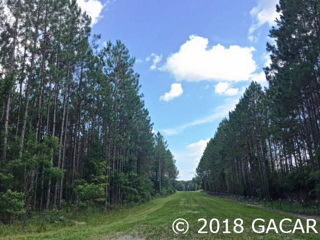 Lot 25 SW Carnation Court, Ft. White, FL 32038 (MLS #415963) :: Bosshardt Realty