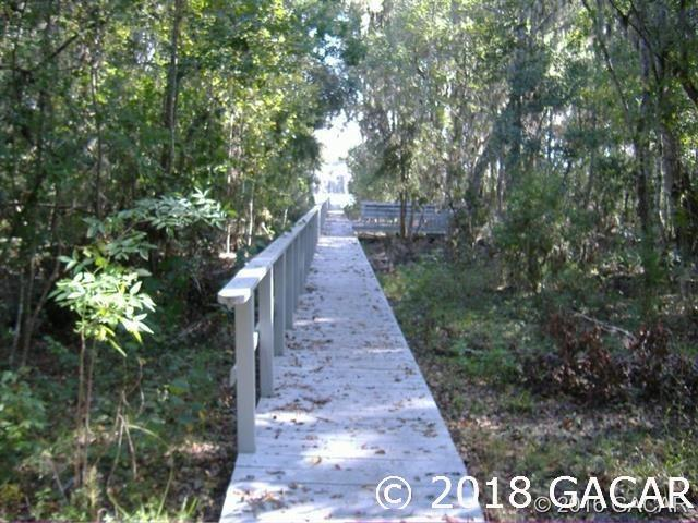21115 NE 117th Avenue, Earleton, FL 32631 (MLS #416834) :: Rabell Realty Group