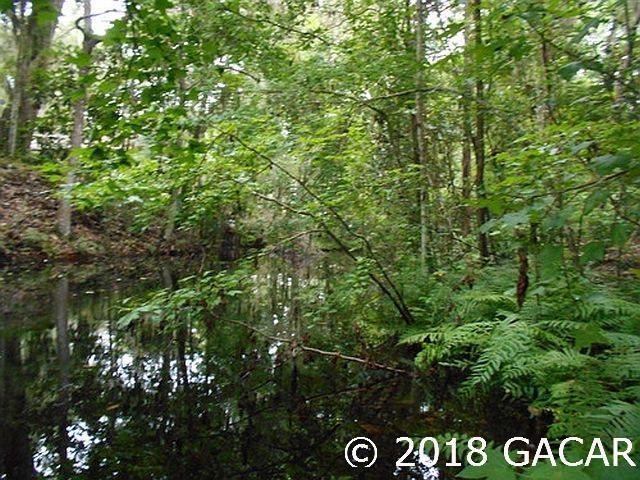 TBD SE 31st Way, Melrose, FL 32666 (MLS #417230) :: Bosshardt Realty