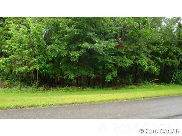 00 NW 141 Street, Alachua, FL 32615 (MLS #419631) :: Rabell Realty Group