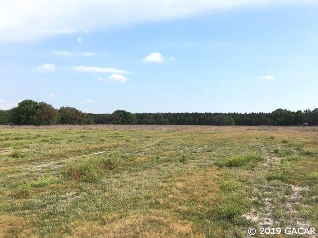 15825 NW 298th Street, High Springs, FL 32643 (MLS #421919) :: OurTown Group