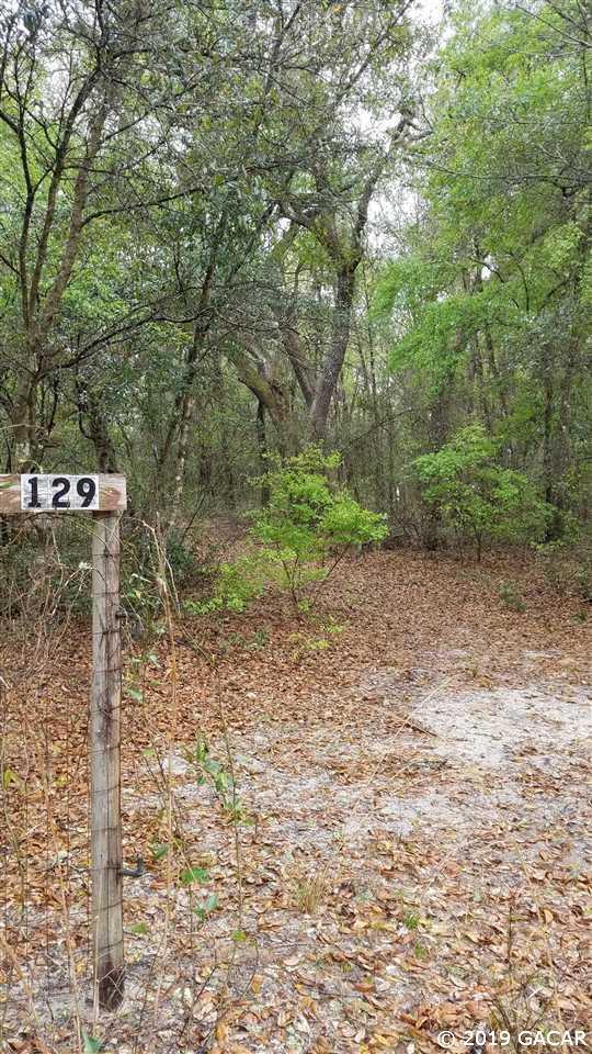 129 2nd Street, Melrose, FL 32666 (MLS #422894) :: Florida Homes Realty & Mortgage