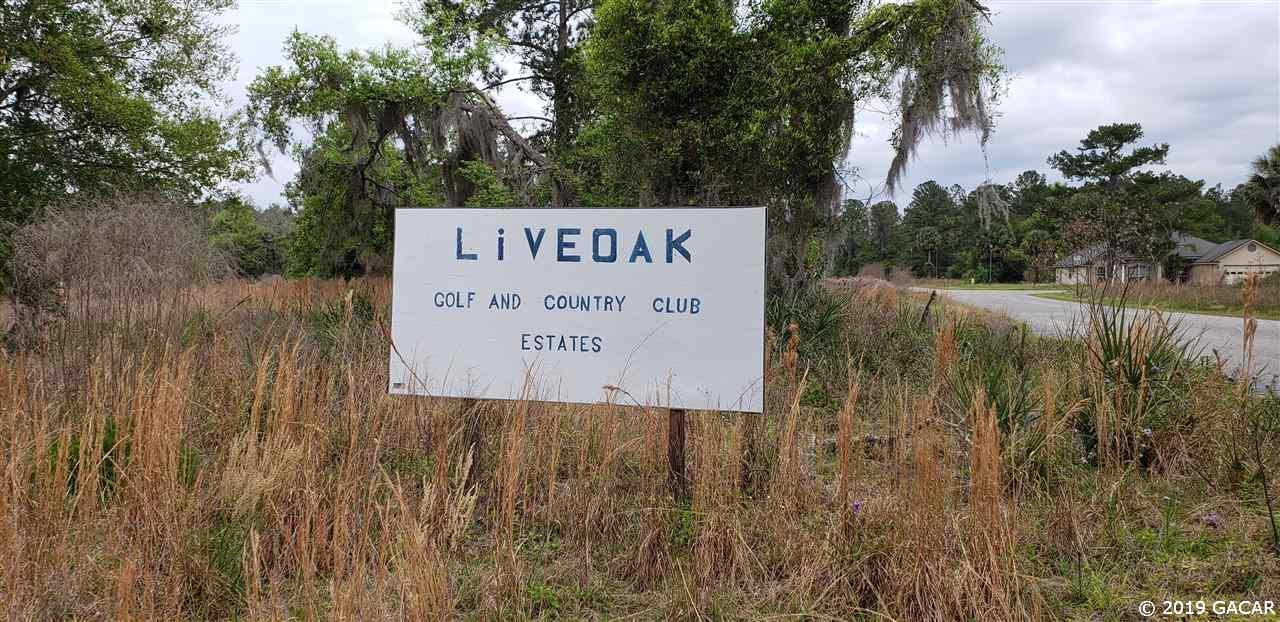 246 Live Oak Loop - Photo 1