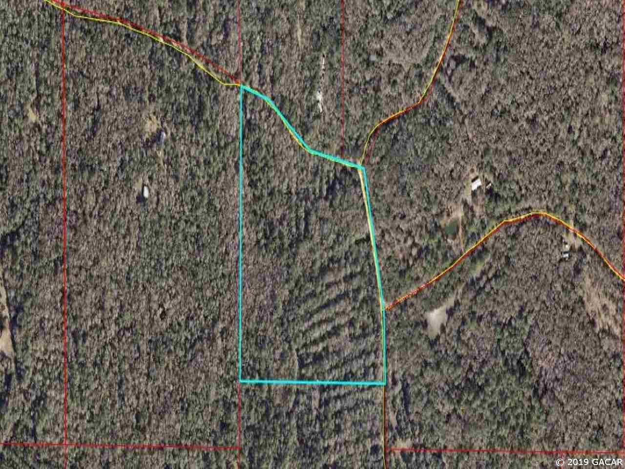 24.96 Acres Buck Trail - Photo 1