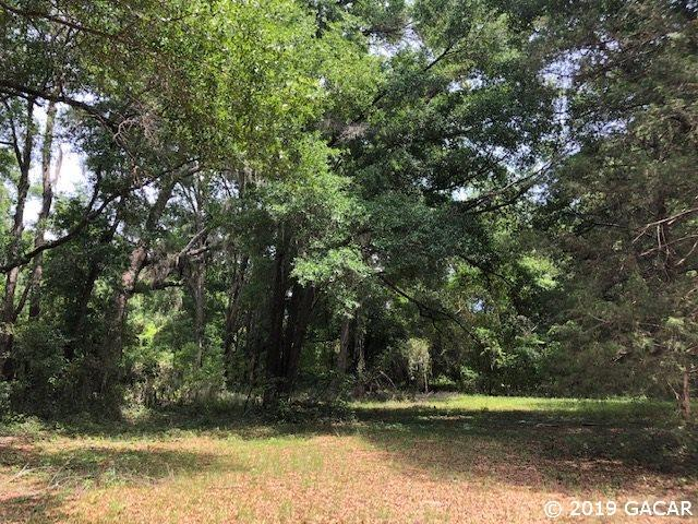 NW 257TH Terrace, High Springs, FL 32643 (MLS #425116) :: Bosshardt Realty