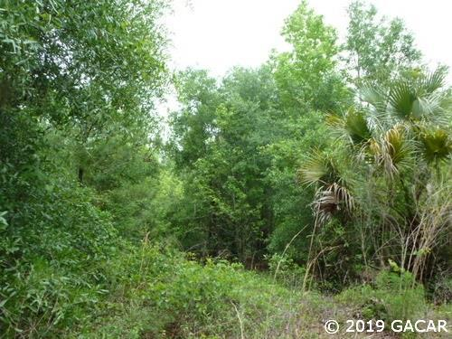 TBD Holden Park Rd, Hawthorne, FL 32640 (MLS #425161) :: Bosshardt Realty