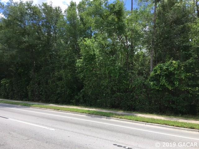 000 W Newberry Road, Jonesville, FL 32669 (MLS #425733) :: Pepine Realty