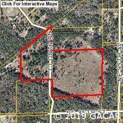8691 NE 92nd Court, Bronson, FL 32626 (MLS #429012) :: Bosshardt Realty