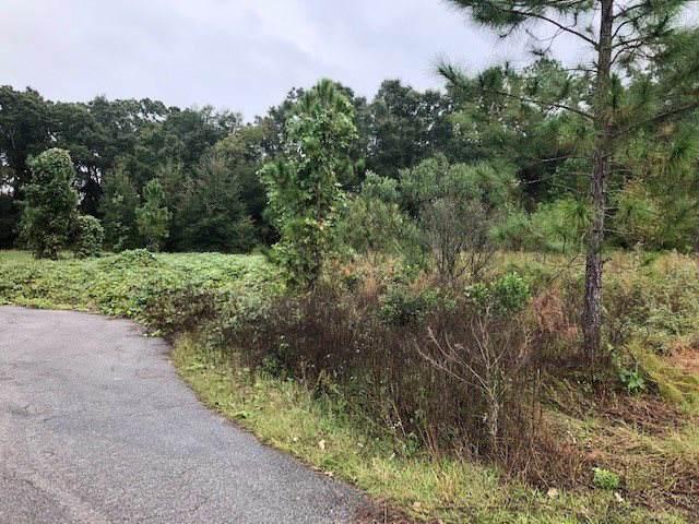 NW 174th Drive, Alachua, FL 32615 (MLS #430785) :: Bosshardt Realty