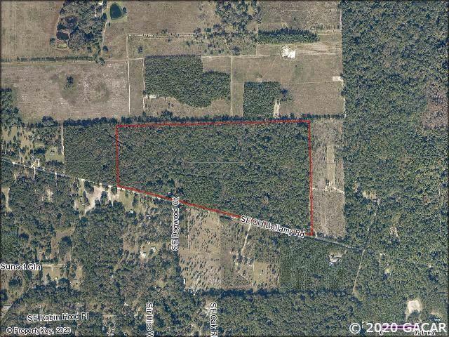 651 SE Old Bellamy, High Springs, FL 32643 (MLS #431081) :: Rabell Realty Group