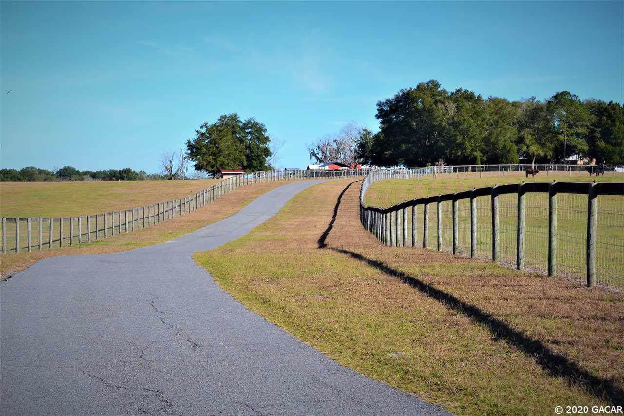 11771 County Road 132 - Photo 1
