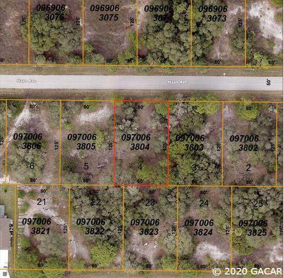 0000 Mayo Avenue, North Port, FL 34291 (MLS #434679) :: Pristine Properties
