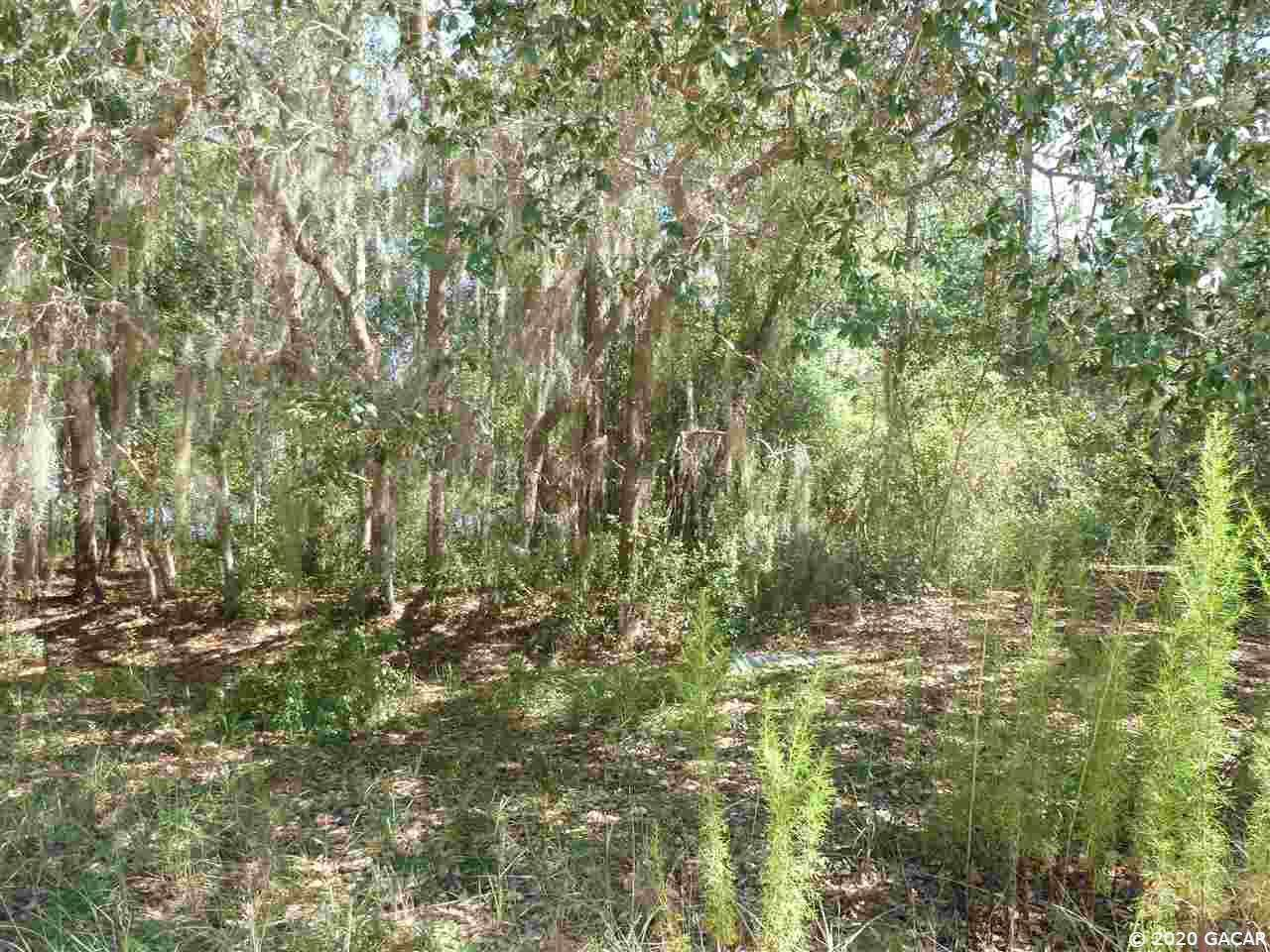 194 Indian Lakes Road - Photo 1