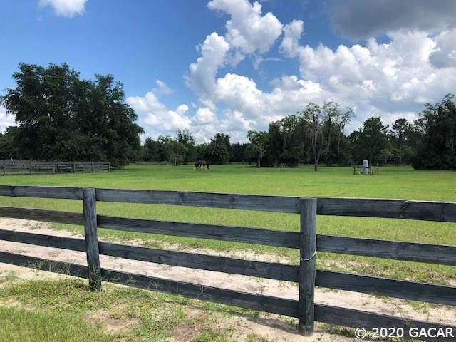 5510 NE County Road 219A, Melrose, FL 32666 (MLS #436488) :: Rabell Realty Group