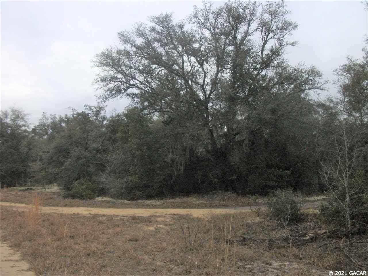 7441 Antietam Way - Photo 1