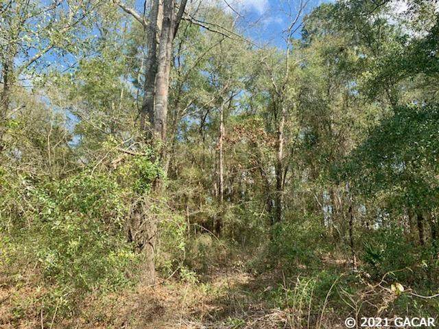 323 SW Woodleaf Court, Lake City, FL 32024 (MLS #441938) :: The Curlings Group