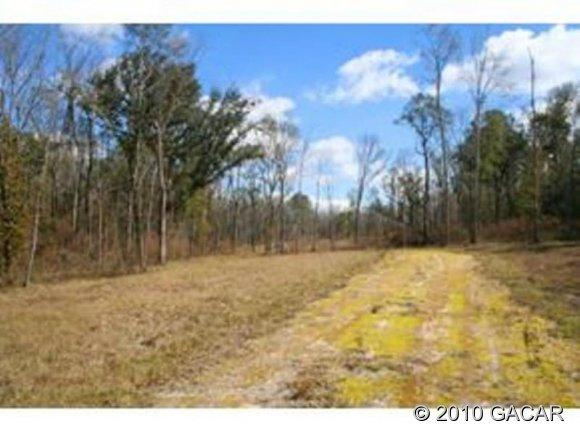 21643 NW County Rd 241 CR, Alachua, FL 32615 (MLS #311902) :: Florida Homes Realty & Mortgage