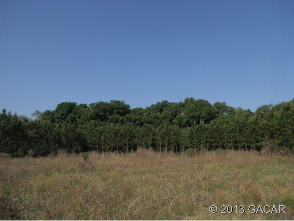 XX Wester Drive, High Springs, FL 32643 (MLS #341716) :: Bosshardt Realty