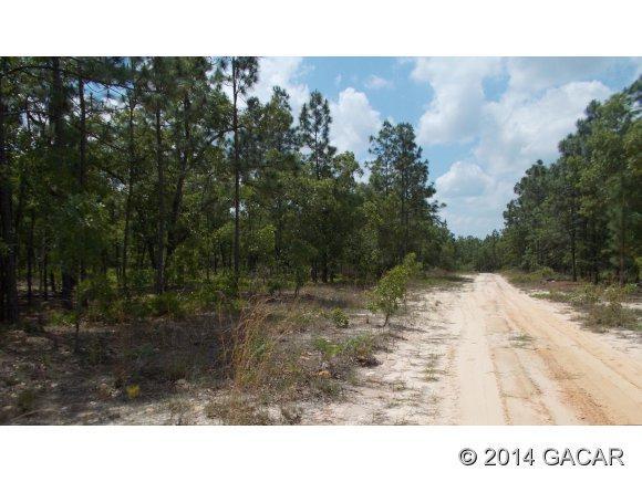 7153 Rutgers Street, Keystone Heights, FL 32656 (MLS #352715) :: Florida Homes Realty & Mortgage