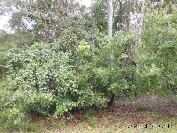 LOT 28 SW Magnolia Lane, Ft. White, FL 32038 (MLS #355718) :: Bosshardt Realty