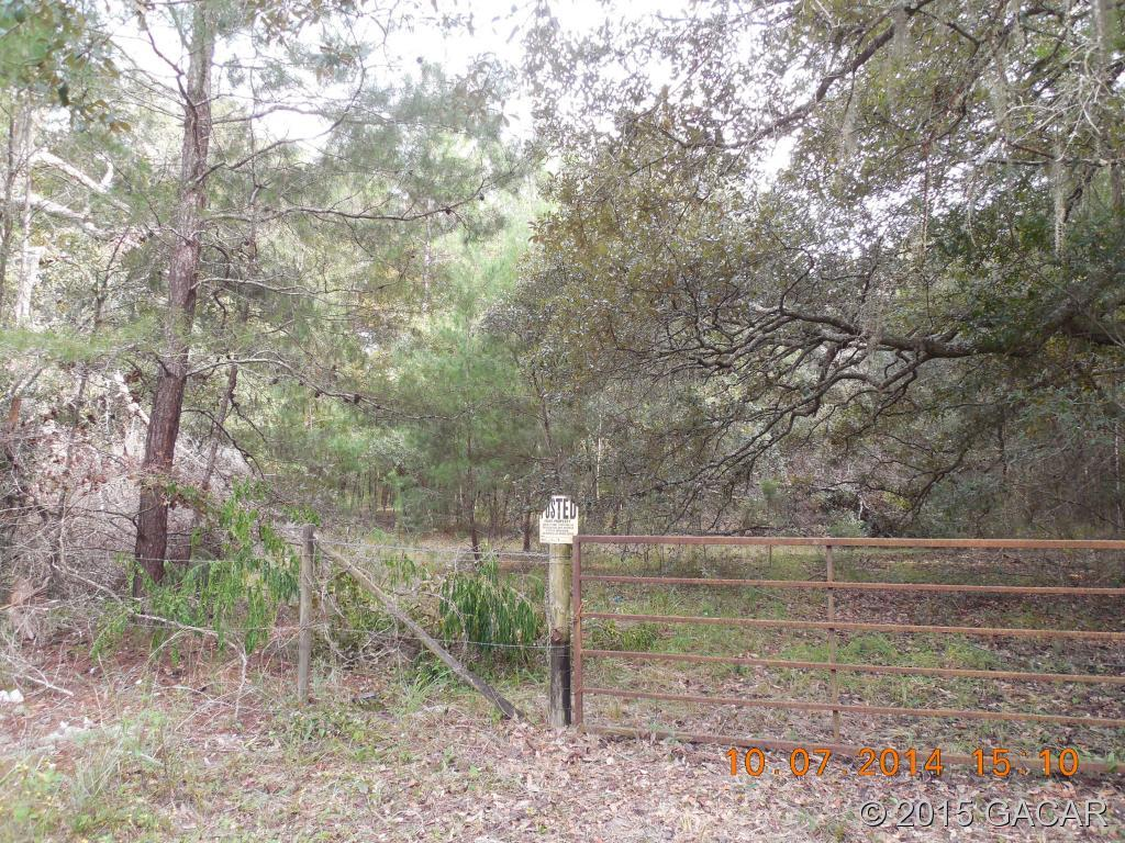 TBD County Road 219A - Photo 1