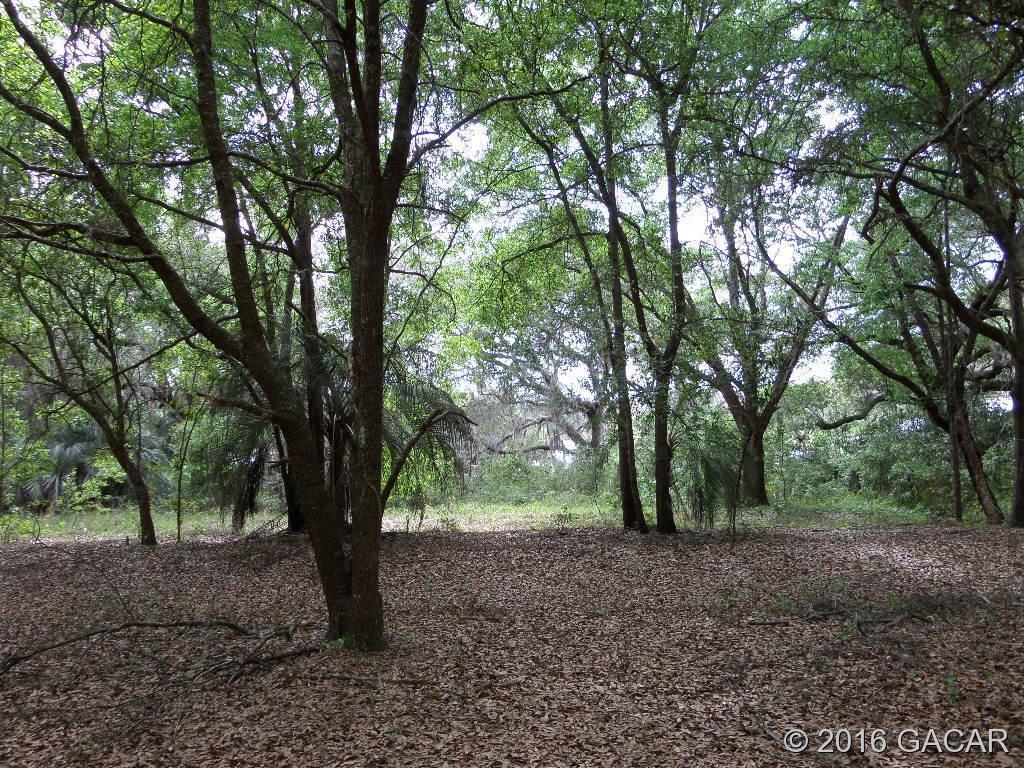 24 Comanche Terrace - Photo 1