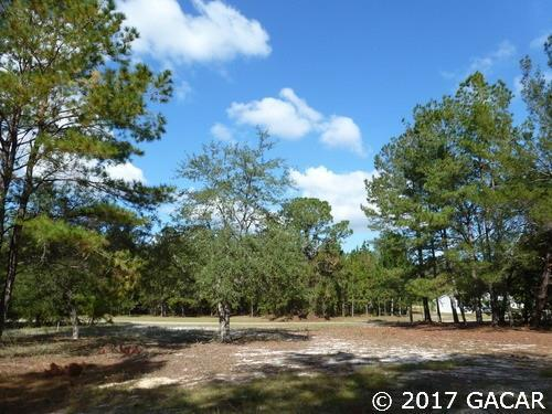 107 Paran Drive, Melrose, FL 32666 (MLS #409884) :: Rabell Realty Group