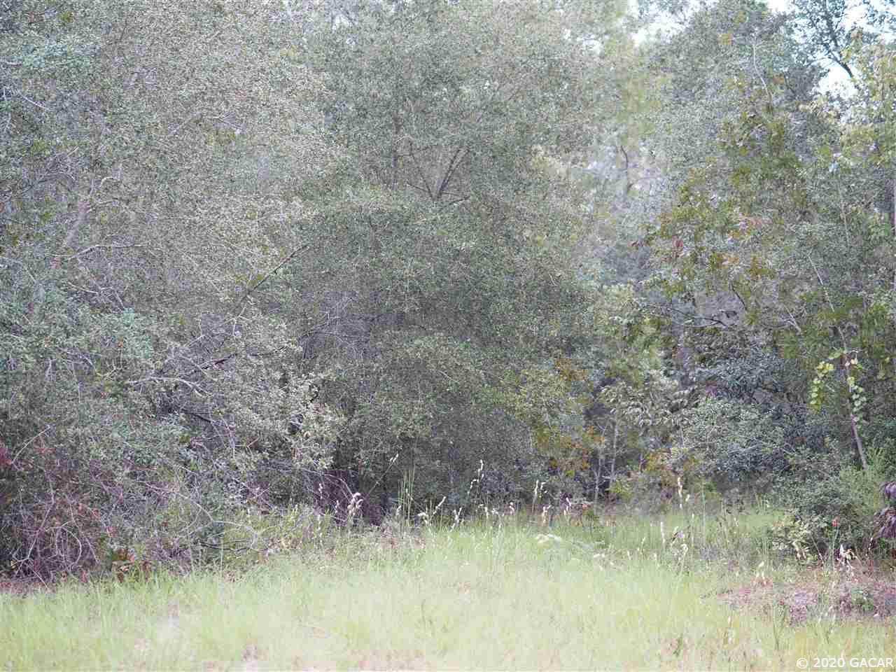 5770 Campo Drive - Photo 1
