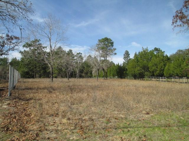 6210 Little Lake Geneva Road, Keystone Heights, FL 32656 (MLS #359615) :: Pepine Realty