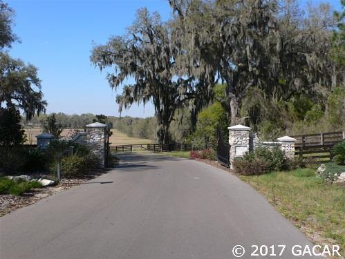 10630 NW 153rd Terrace, Alachua, FL 32615 (MLS #403441) :: Rabell Realty Group