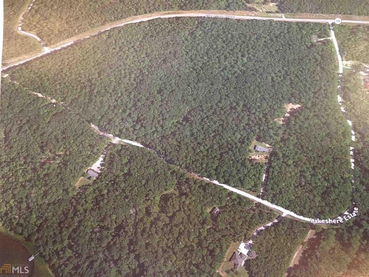 0 Elberton Hwy State Hwy 79 - Photo 1