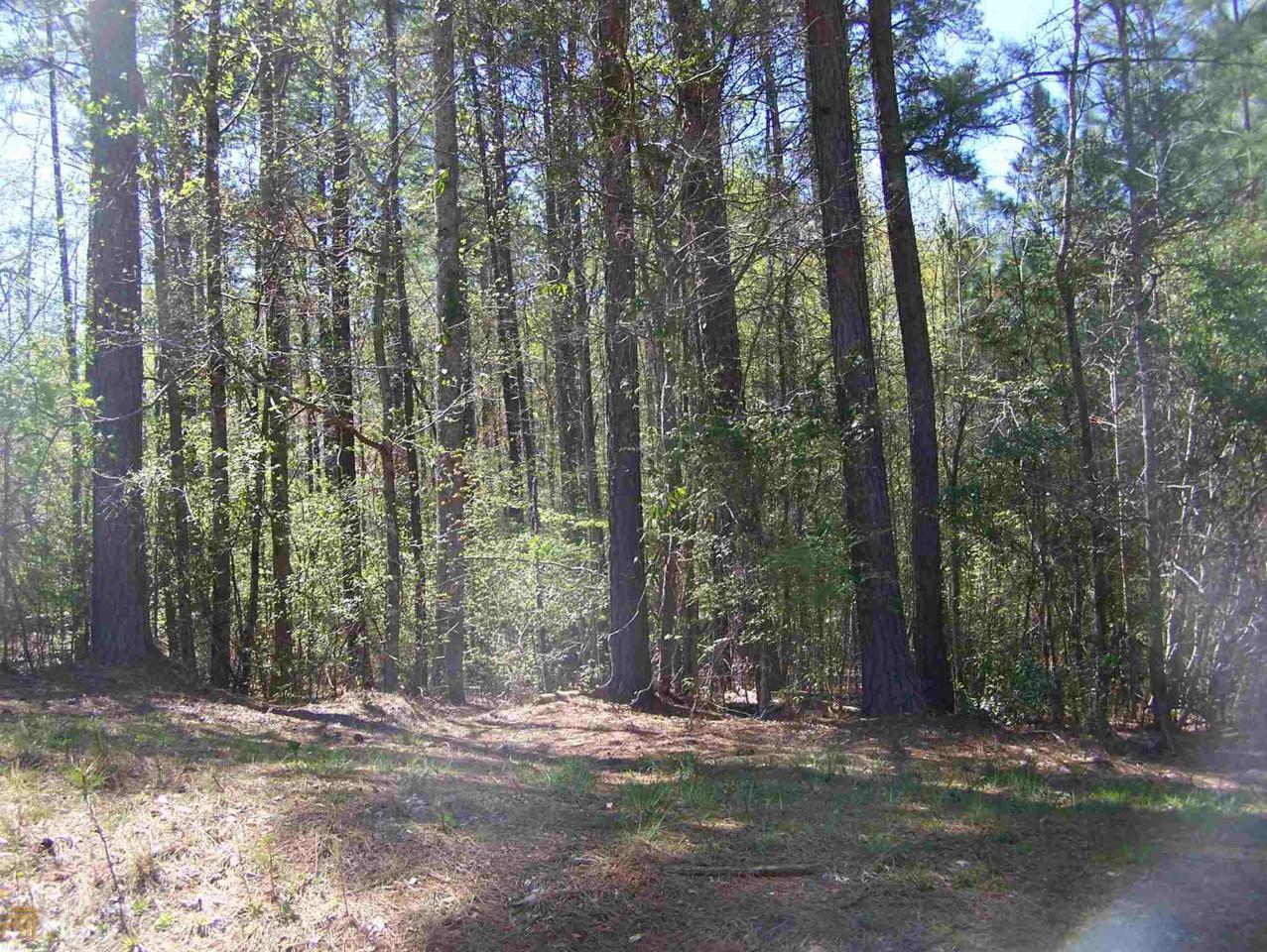 0 Blue Branch Rd - Photo 1