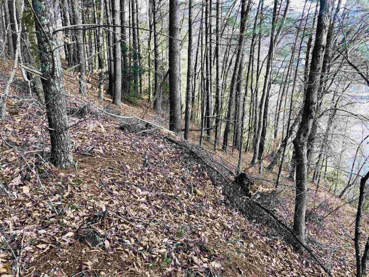 0 Pine Ridge - Photo 1