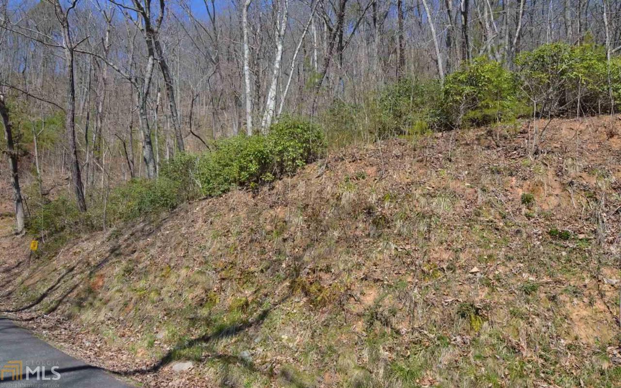 Lot 15 Deer Valley - Photo 1
