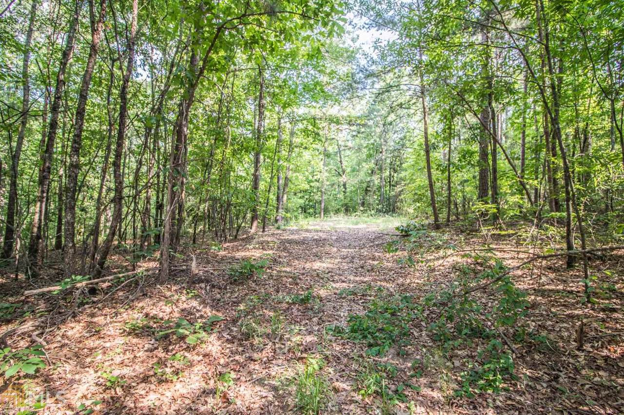 38.6 Acres Cross Creek Ln - Photo 1