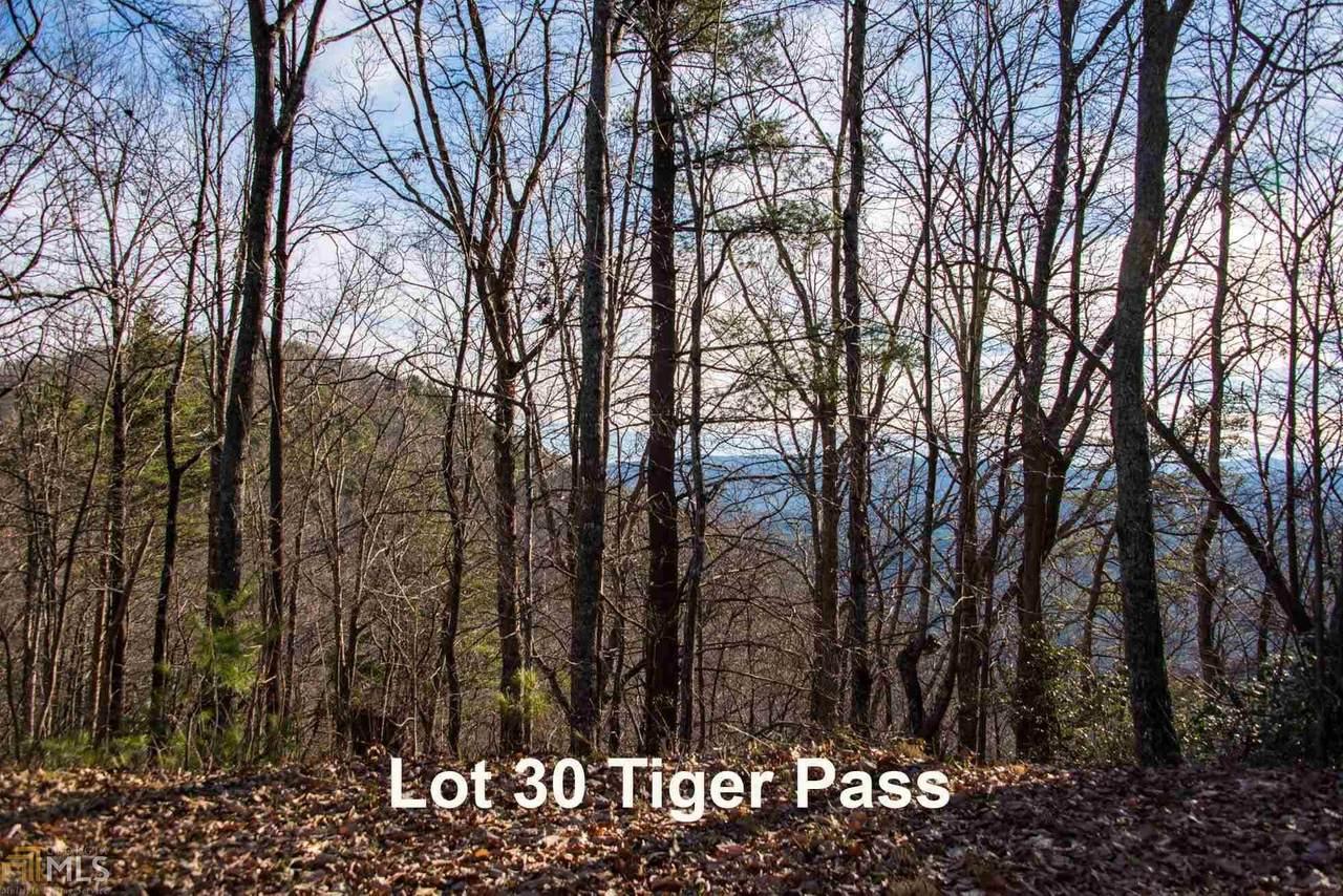 0 Tiger Pass - Photo 1