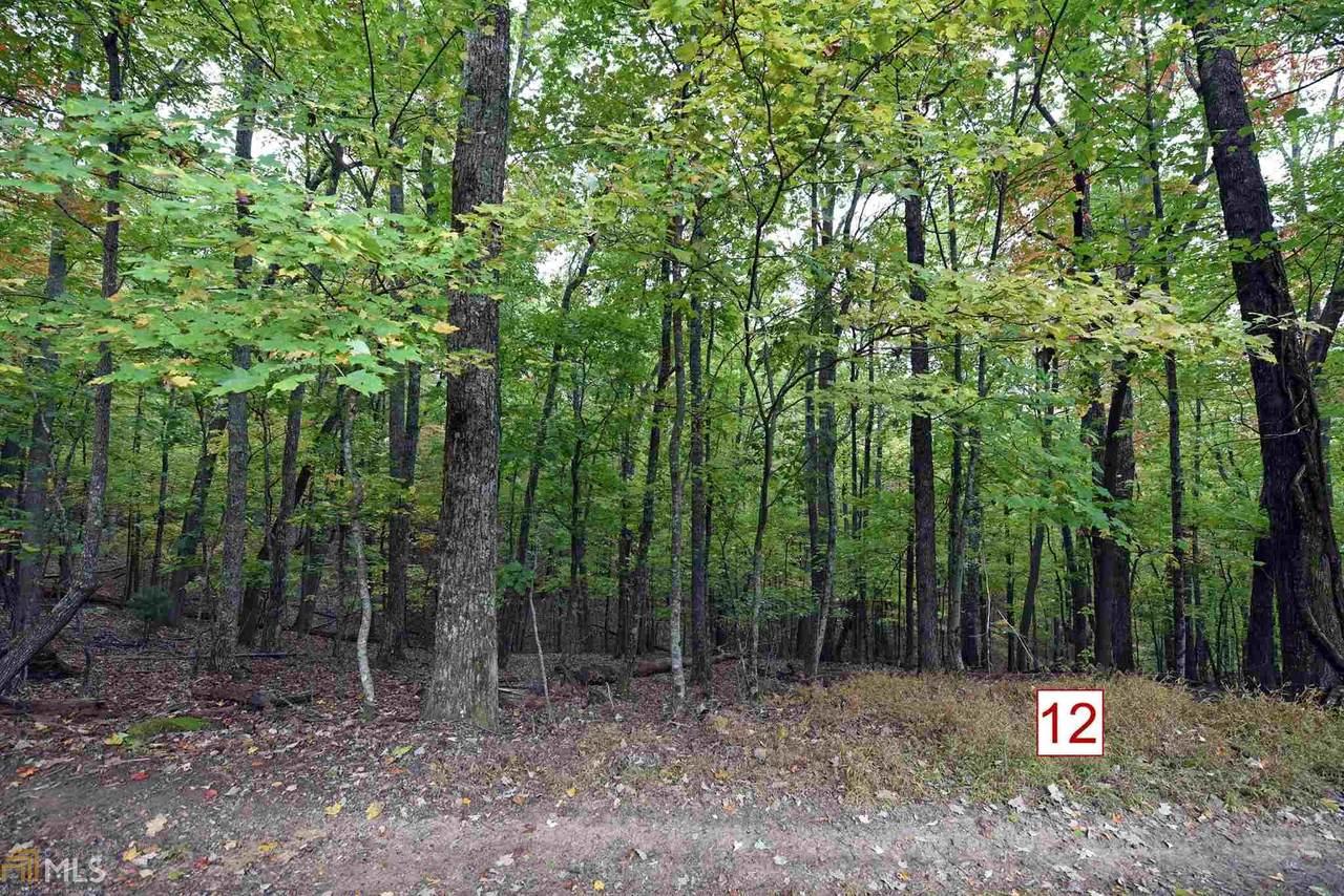 0 Picklesimer Mtn Retreat Lt 12 - Photo 1
