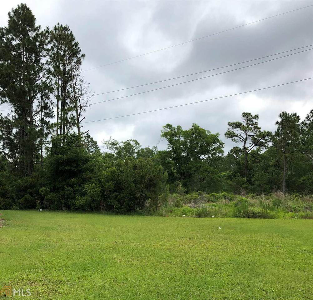 135 056 Ellie Long Div Tract - Photo 1