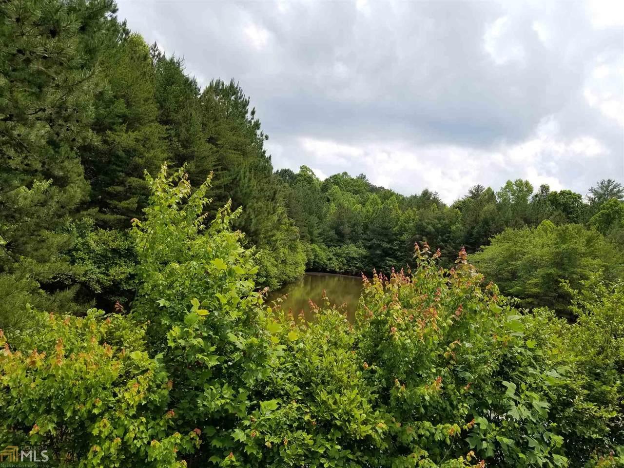 0 Spring Creek Rd - Photo 1